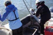 Section 103 Sediment Evaluation, Brunswick Harbor Navigation Project, Brunswick, Georgia
