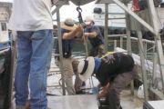 San Juan Harbor Section 103 Sediment Evaluation