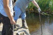 Yaquina River and Depoe Bay Sediment Sampling and Analysis