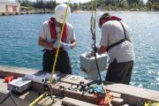 Section 103 Sediment Evaluation, Arecibo Harbor, Arecibo, Puerto Rico