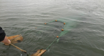 Habitat Characterization of the Log-Spiral Bay for the Coos Bay North Jetty Major Maintenance Design Documentation Report
