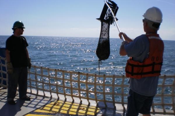 hoisting clam dredge.JPG