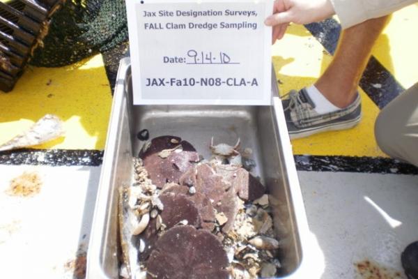clam dredge N08-A.JPG