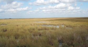 L-30 SMPP Water Quality Screening, Miami, Florida
