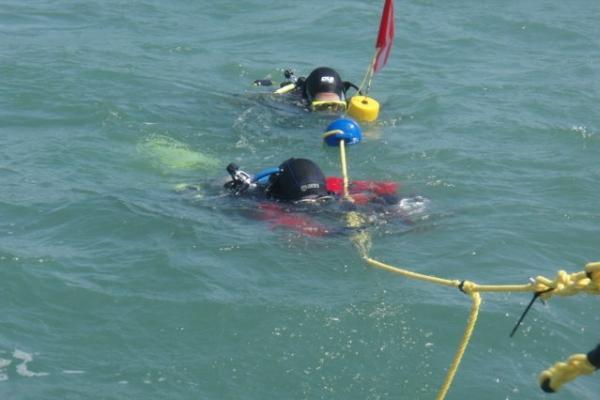 Divers on tag line (FILEminimizer).jpg